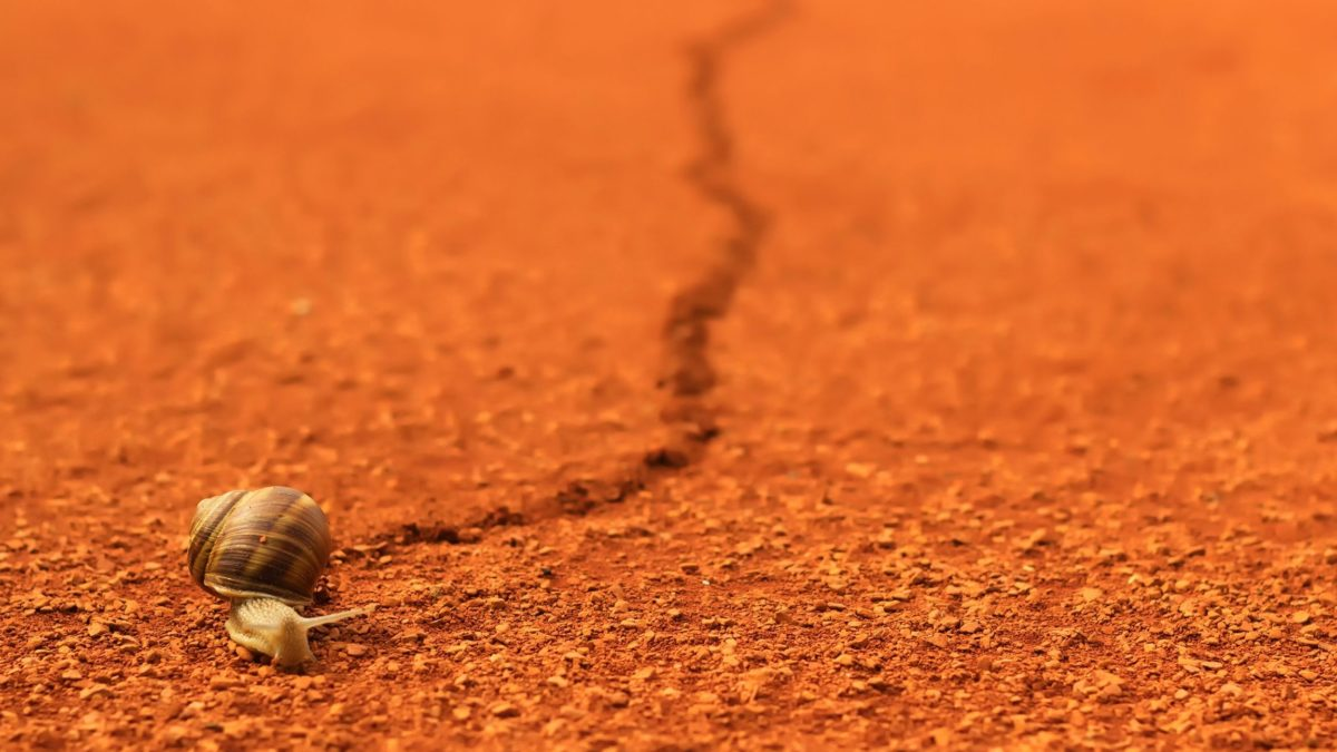 Tenis to nie sprint, tylko ultramaraton